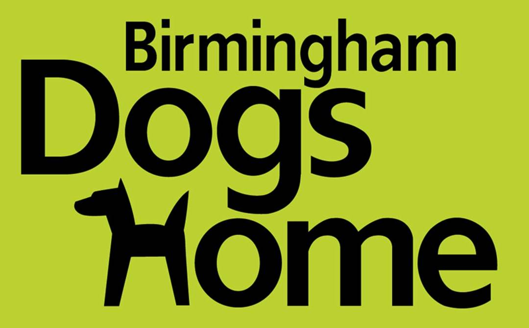 Kang & Co Solicitors Raises Funds for Birmingham Dogs Home