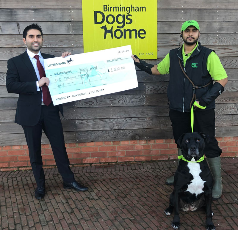 kang and co solicitors donation birmingham dogs home charity partner