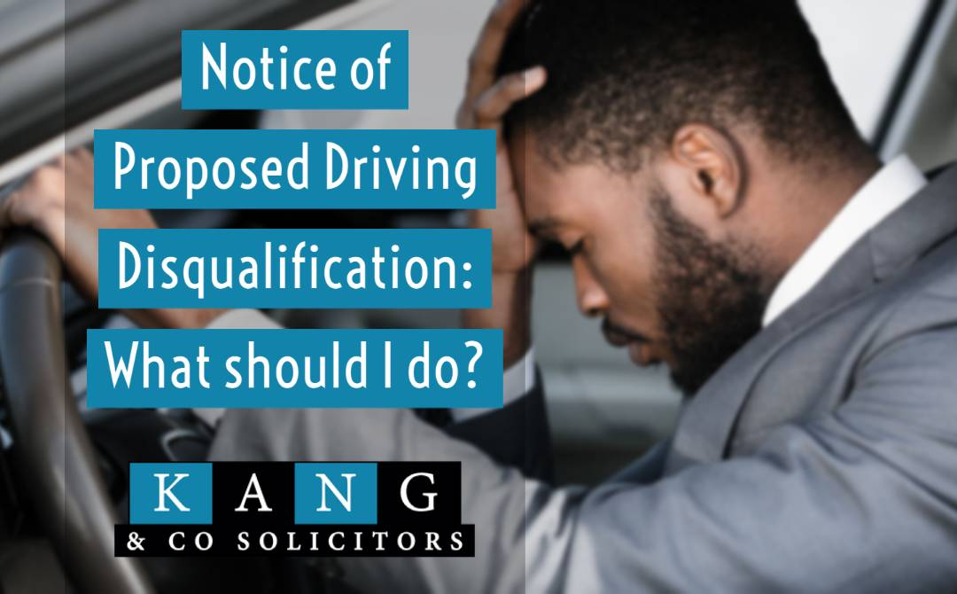 Notice of Proposed Driving Disqualification: What should I do?